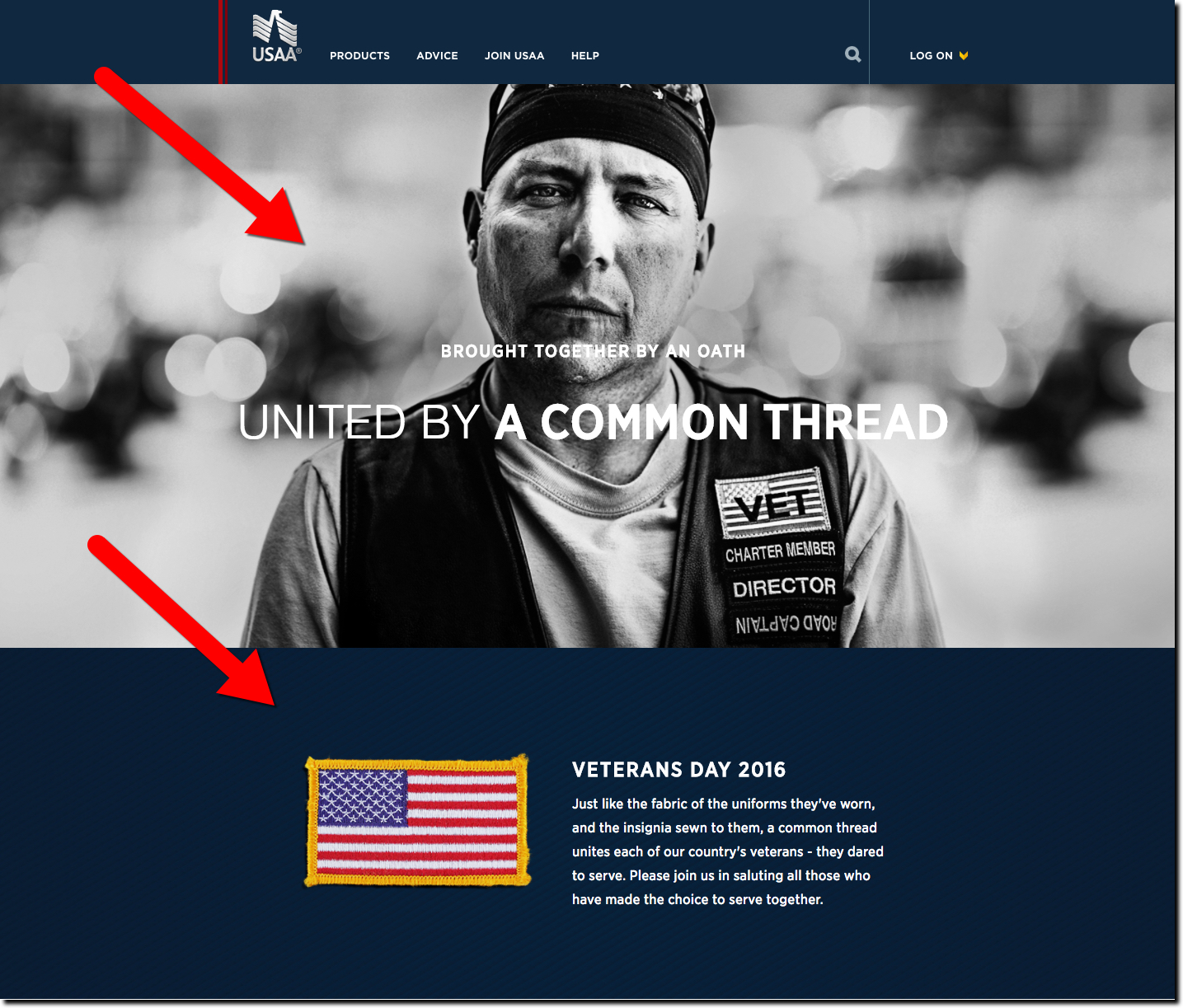 USAA homepage on Veterans Day (11 Nov 2016)